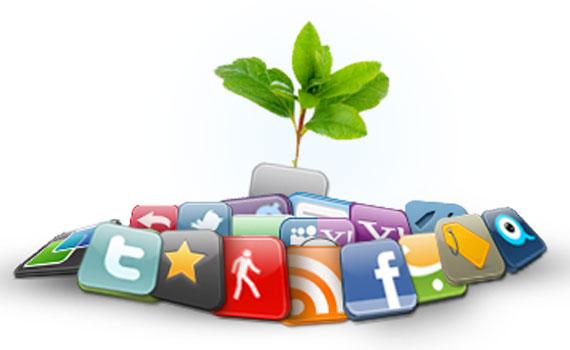 إدارة مواقع ويب